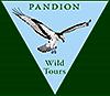 LogoPandionWildTours_small