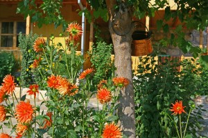 pelikan_birding_lodge_accommodation_60